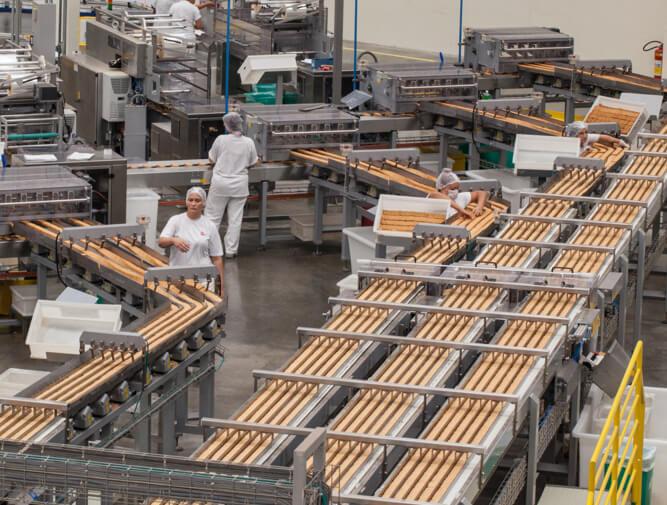 Fotografia da linha de produção produção da Selmi com novas categorias de alimento